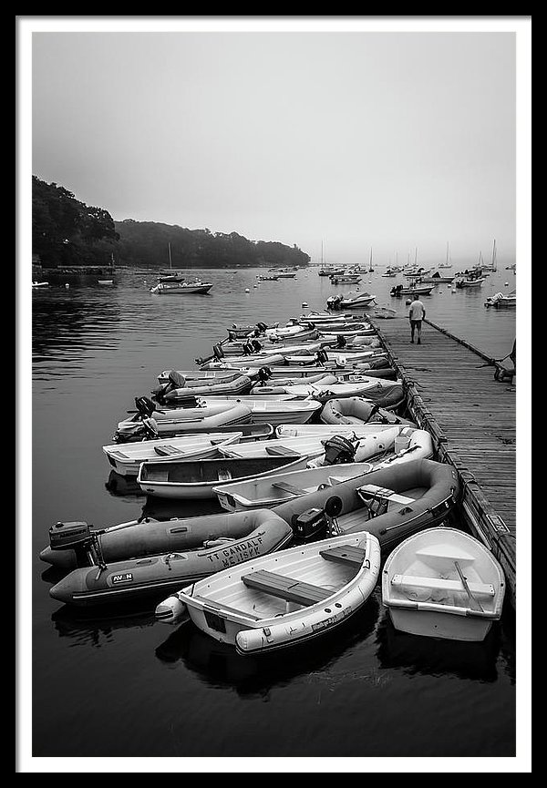 Maine Harbor On Misty Morning In Black & White