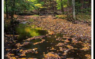 Maine New England Fall Foliage In Autumn