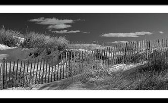 Maine Winter Coastal Dunes Bw Panorama